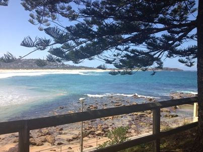 dee why 30.10.13