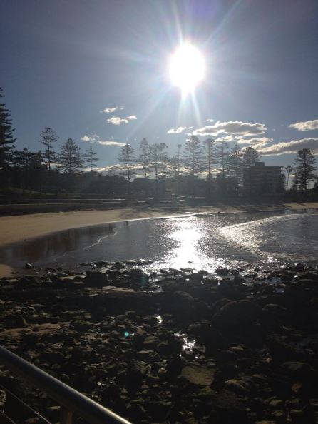 Dee Why Afternoon 22.7.13