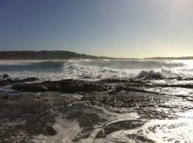 Dee Why surf 3