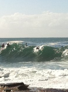 Dee Why surf 6