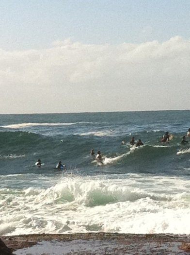 Dee Why surf 7