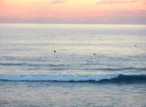 vacation at the beach sydney