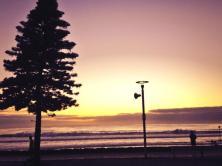 Manly Beach 7.2.14 2