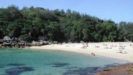 shelly-beach-manly-sydney-small
