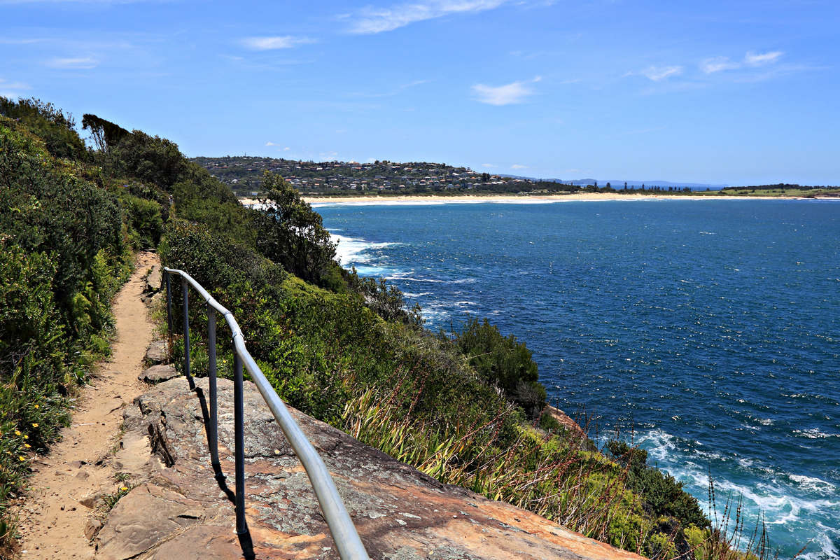 Clifftop Walkway Dee Why Beach to Curl Curl Beach Sydney