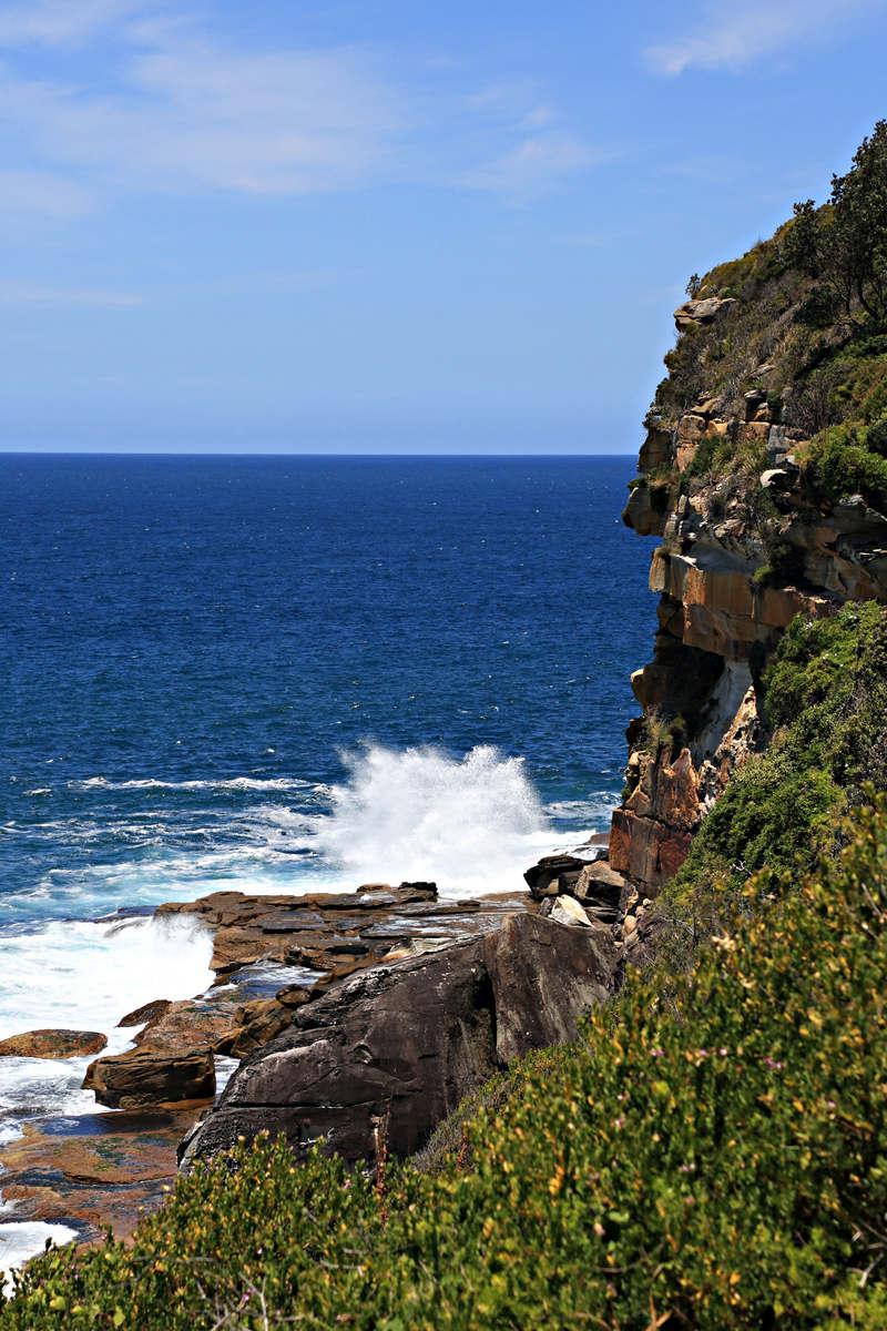 stunning ocean views on clifftop walkway Dee Why Beach